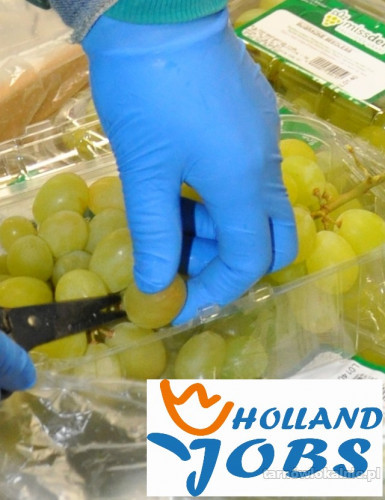 Praca w Holandii w magazynach produkcyjnych.